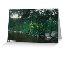 beautiful wild tulips gowing in the shade of huge trees on the banks of the Mighty Grand River Greeting Card