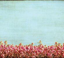 S U M M E R  by Anne Staub