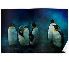 Cold Penguins Poster