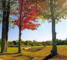 Lazy Autumn Afternoon, New England by Alberto  DeJesus