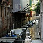 The Canals of Venice by Robert Arconti