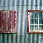 The Old Windows by Anthony Woolley
