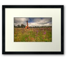Wildflowers - Hill End, NSW Australia - The HDR Experience Framed Print