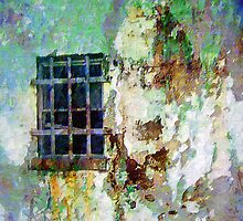 Old Barred Window by suzannem73