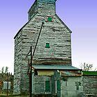Farmer's Elevator, Reed Point, Montana by Bryan D. Spellman