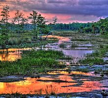 Florida Everglades Sunset by fzhimages