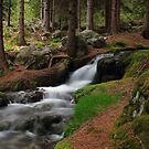 Antrona Valley, National Park (4) by jimmylu