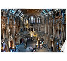 The Natural History Museum: London. Poster