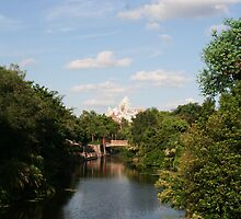 Expedition Everest - Walt Disney World by searchlight