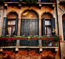 Venezian Windows by Barbara  Brown