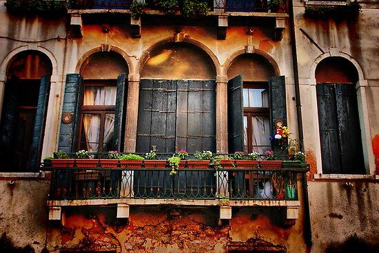 Venezian Windows by Barbara  Brown
