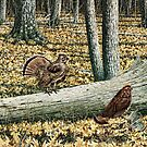 Ruffed Grouse, Male and Female by Walter Colvin