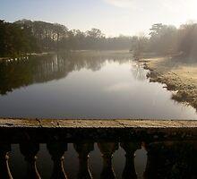 Frosty Lake at Blenheim Palace by Lawrence Harman