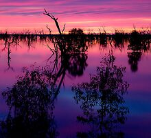Mystical Menindee by Carol Ritchie