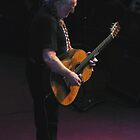 The Incomparable Willie Nelson by Swede