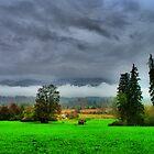 rainy landscape by Daidalos