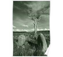 Standing Stones, Isle of Bute, Scotland Poster