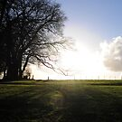 And the sun broke through... by Llawphotography