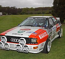 Audi Quattro. by Fred Taylor