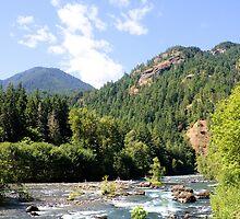 Elhwa River, Olympic National Park, Washington by Stacey Lynn Payne