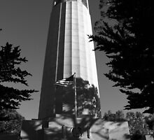 San Francisco's Coit Tower  by fototaker