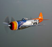 P-47D Thunderbolt by StocktrekImages
