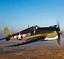 Grumman F6F Hellcat by StocktrekImages