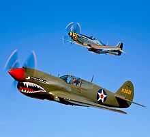 P-40E Warhawk by StocktrekImages