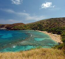 Hanauma Bay by Nate Lam