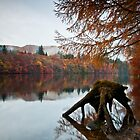 Autumn at Loch Faskally by mountainsandsky