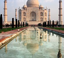 Taj by Shoreham-Boy