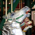 Prospect Park Carousel 2 by andytechie