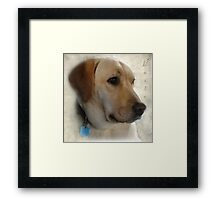 My Girl Rosie Framed Print