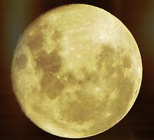 Full moon -A- 'Risi'N by LJ_©BlaKbird Photography