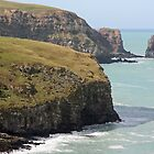Otanerito Bay - Banks Peninsular, New Zealand by Ruth Durose