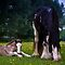 Mother and Foal by Loren Goldenberg-Kosbab