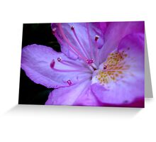 The inner workings of a flower  ^ Greeting Card