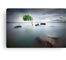 Zen Tide Canvas Print