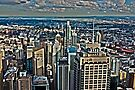 Panorama of Sydney  by EblePhilippe