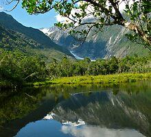 Franz Josef Glacier Walk - Mirror Pool by Chris Mehl