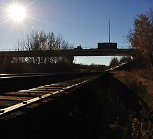 Camrose Train Trestle in Fall by RozzBox