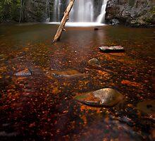 """Upper Lilydale Falls"" by Husky"
