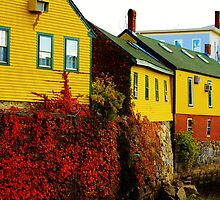 colorful buildings by apsjphotography