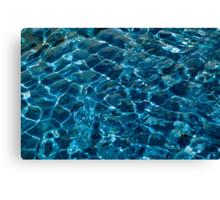 Penguin Pool I Canvas Print