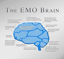 The Emo Brain by Steven  Sandner