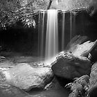 Oaklands falls by donnnnnny