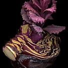 Red Cabbage by TheWalkerTouch