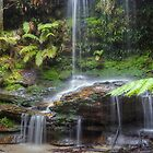Burgess falls by donnnnnny