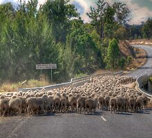 Peak Hour - Near Hill End NSW - The HDR Experience by Philip Johnson