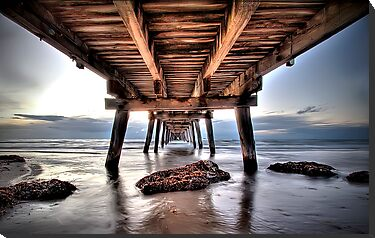 Vanishing Point by Shannon Rogers